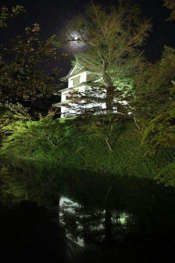 弘前城 ライトアップ おぼろ月と共に