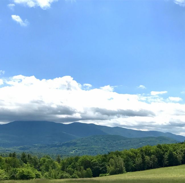 No Filter Nature Tree Beauty In Nature Mountain Sky Scenics Tranquility Tranquil Scene Day No People Cloud - Sky Landscape Outdoors Green Color Growth Mountain Range Stowe Vermont No Filters