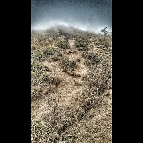 The 7 Hills of Regret ☝? Let's Go! 7bukitpenyesalan Mudah2an Ngga Nyesel mountaineer rinjani lombok adventure jelajahlangit expedition