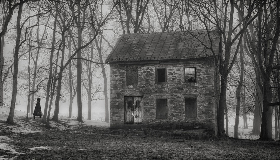 Little Red Riding Hood Spooky Atmosphere Spooky Trees Haunted House Abandoned Places Witchcraft  Witches