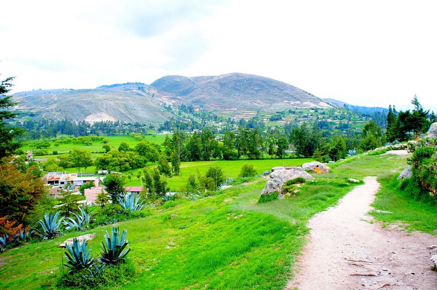 View from Ventanillas de Otuzco -Cajamarca -Perú✨👼🏻 Nature Beauty In Nature Scenics Tranquil Scene Green Color Growth Tranquility Landscape Outdoors Field Agriculture Laviniafenton EyeEm Gallery EyeEmNewHere Beauty In Nature Cajamarca-Perú