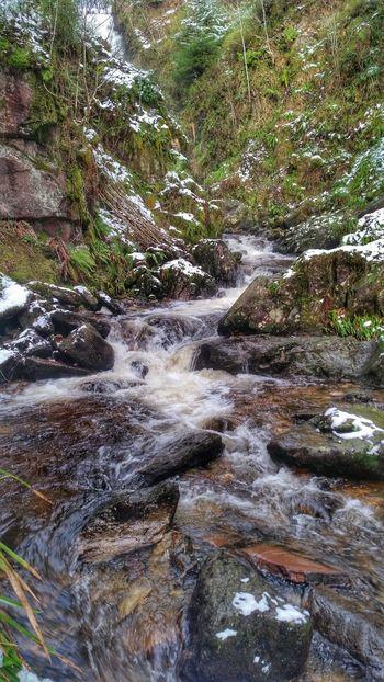 Water_collection Eyeem Scotland  Aberfoyle Winter Countryside