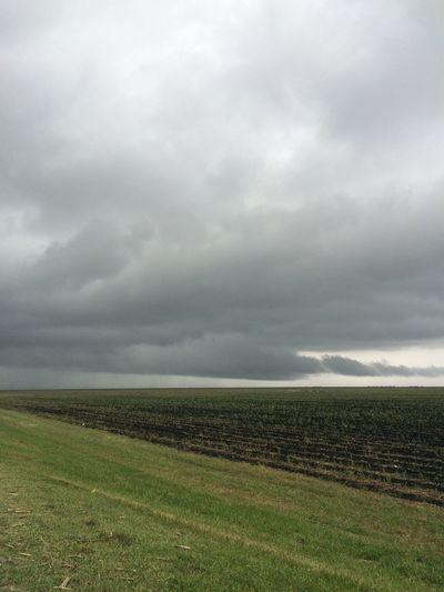 Yesterdays weather 2/28/2015 Weather