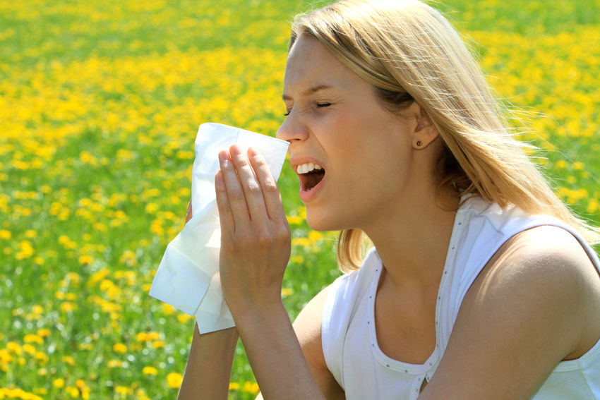 Young woman with a pollen allergy blowing in a handkerchief Flowering Plant Woman Ellergy Flowers Girl Handkerchief Headache Illness Lifestyles Meadow Painful Pollen Pollen Allergy Sick Sickness Soft Tissue Spring Springtime