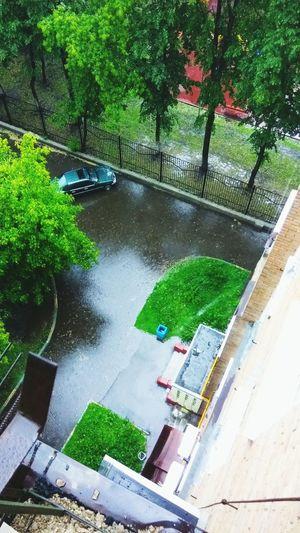 Маленькая река в маленьком дворе. москва russia ураган река газон двор Water Tree Outdoors Building Exterior Nature Architecture