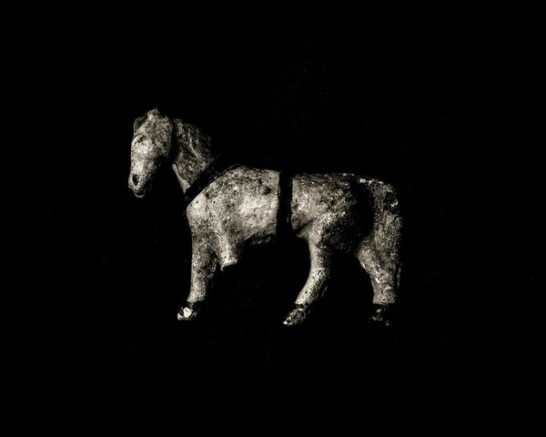 Indoors  Horse Toy Horse Antique Toy Antique Bizzare Strange Weird Eccentricity Eccentric Eerie Eerie Beautiful Curiosity Oddities Black And White Photography Black And White Creepy Close-up Black Background Night Relic Relic From The Past