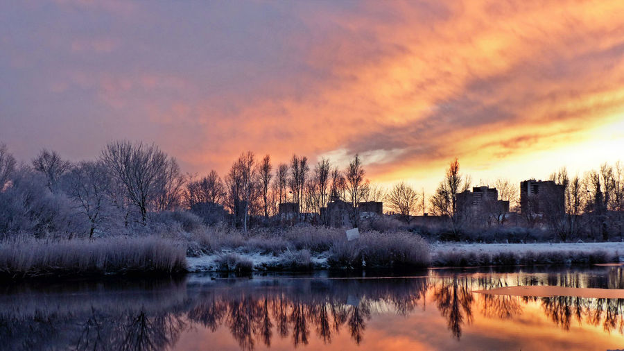Reflection Of Bare Trees On River At Sunset During Winter
