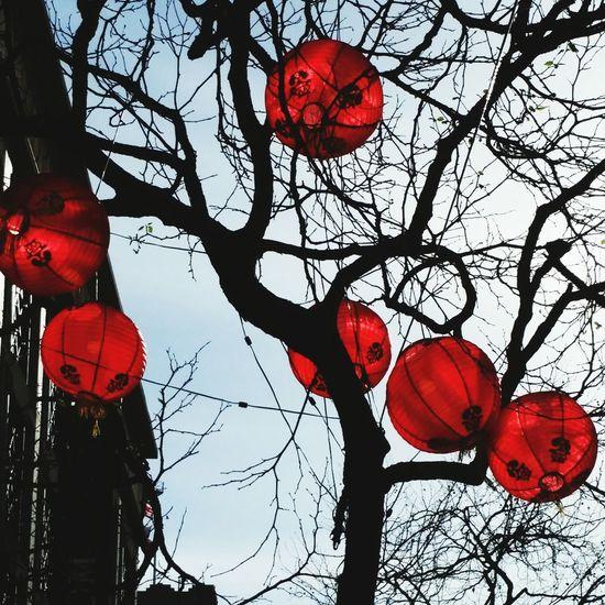 Year of the Monkey Chinese New Year Paperlanterns Street Photography Streetscene Year Of The Monkey