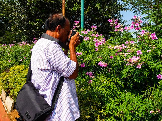 THE PHOTOGRAPHER Digital Single-lens Reflex Camera Scenics - Nature Lush - Description Greenery💛 Flower Tree Men Flowerbed Blooming Pollen Flower Head Petal In Bloom A New Beginning Fragility Countryside Lush Foliage Plant Life Streaming Stamen