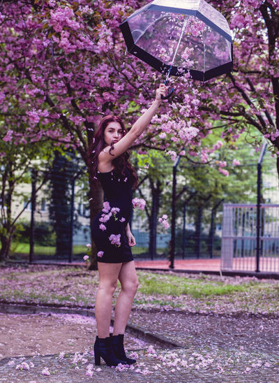 Portrait of young woman holding umbrella against cherry trees on footpath
