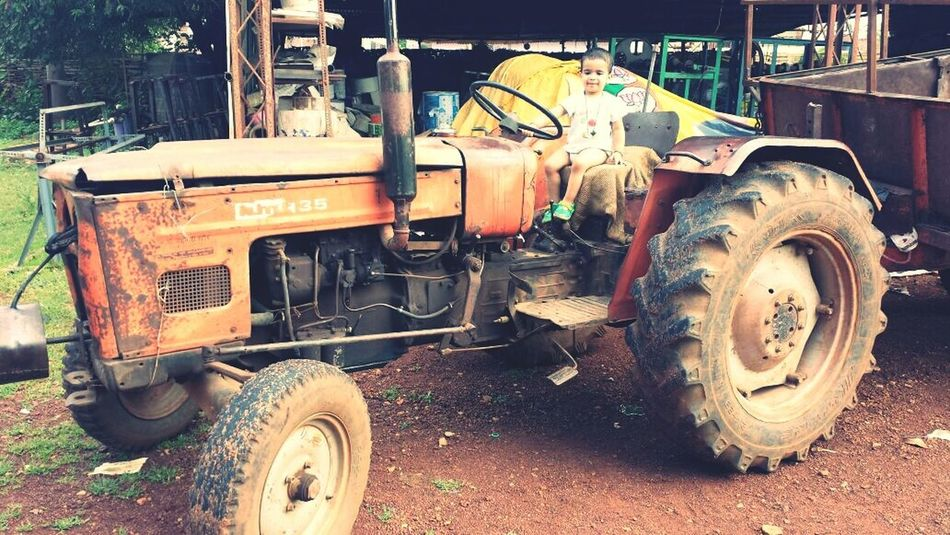 Mode Of Transport Land Vehicle Transportation Tractor