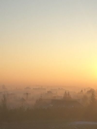 Dawn in Poland Fog Morning Sunset Dawn Landscape Outdoors Nature Silhouette Sky Horizon