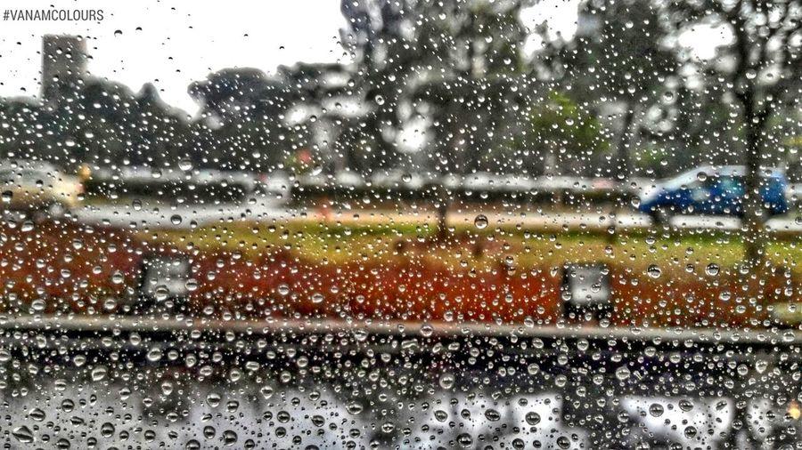 RainyDay Raindropshot Raindrops Splashing Water