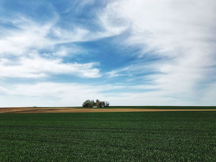 Sky Cloud - Sky Agriculture Environment Field Plant Landscape Land Beauty In Nature Scenics - Nature Tranquil Scene Tranquility No People Green Color Nature