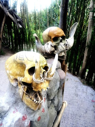 cCheck This Out Skull Headhunters Koppensnellerspad Wildlands Rituals