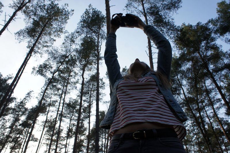 Low Angle View Of Woman Photographing Through Camera While Standing Against Trees At Forest