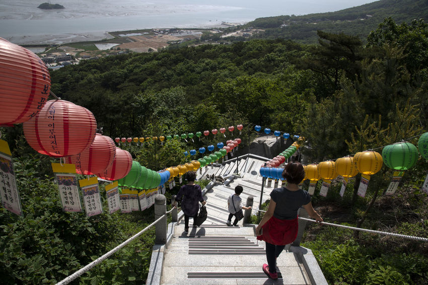 view at Bomunsa, a famous Buddhism temple in Seokmodo, Kimpo, Gyeonggido, South Korea Architecture Bomunsa Buddhism Temple Seokmodo South Korea Adult Architecture Belief Buddhism Built Structure Day Group Group Of People Growth Leisure Activity Lifestyles Men Mountain Nature Outdoors People Plant Real People Rear View Religion Religious  Sky Staircase Temple Tree