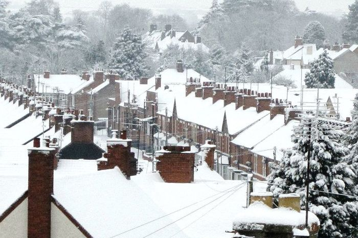 Snowy Day Rooftops Trees Architecture Rows Of Things Perspective All In A Row Chimneys