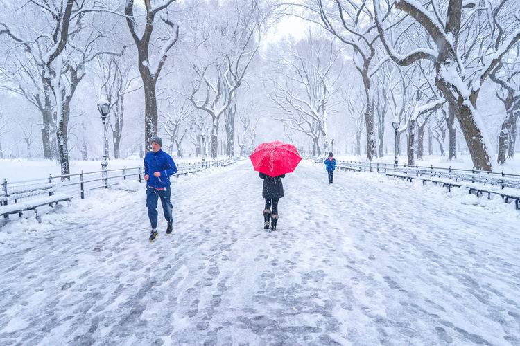 People walking in the snow in Central Park located in New York City. Central Park Running Snow ❄ Winter Bare Tree Beauty Cold Temperature Extreme Weather Leisure Activity Snow Snowing Travel Destinations Tree Walking Warm Clothing Winter Winter Wonderland