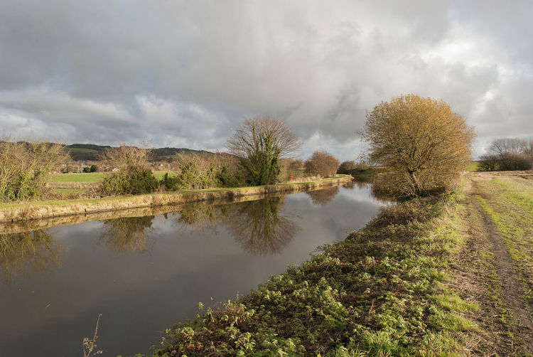 Canal Winter Sun Canal Canals And Waterways Canals And River Trust Tree Water Sky Landscape Cloud - Sky