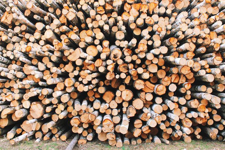 Stack Of Log