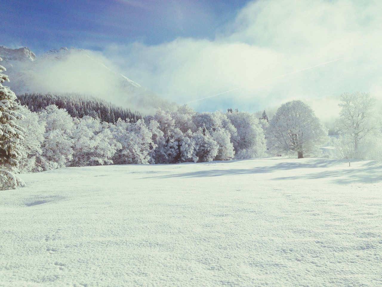 Tranquil view of snowy landscape