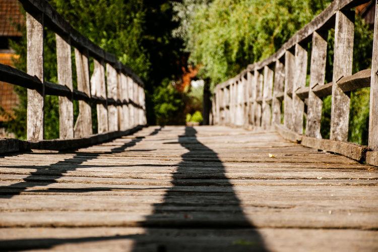 Surface level of footbridge along footpath in park