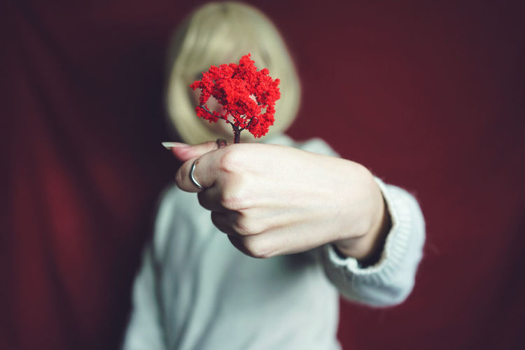 Close-up of woman holding red flowers over face