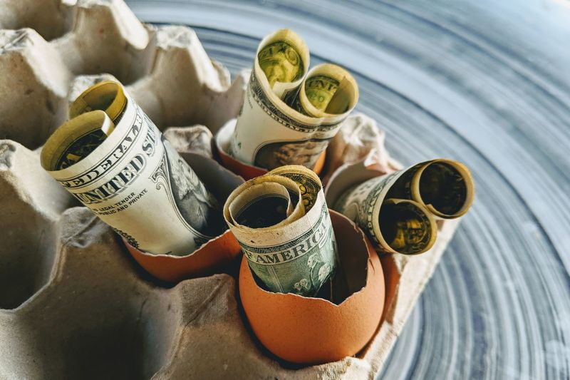 Close-up of banknotes in eggshells