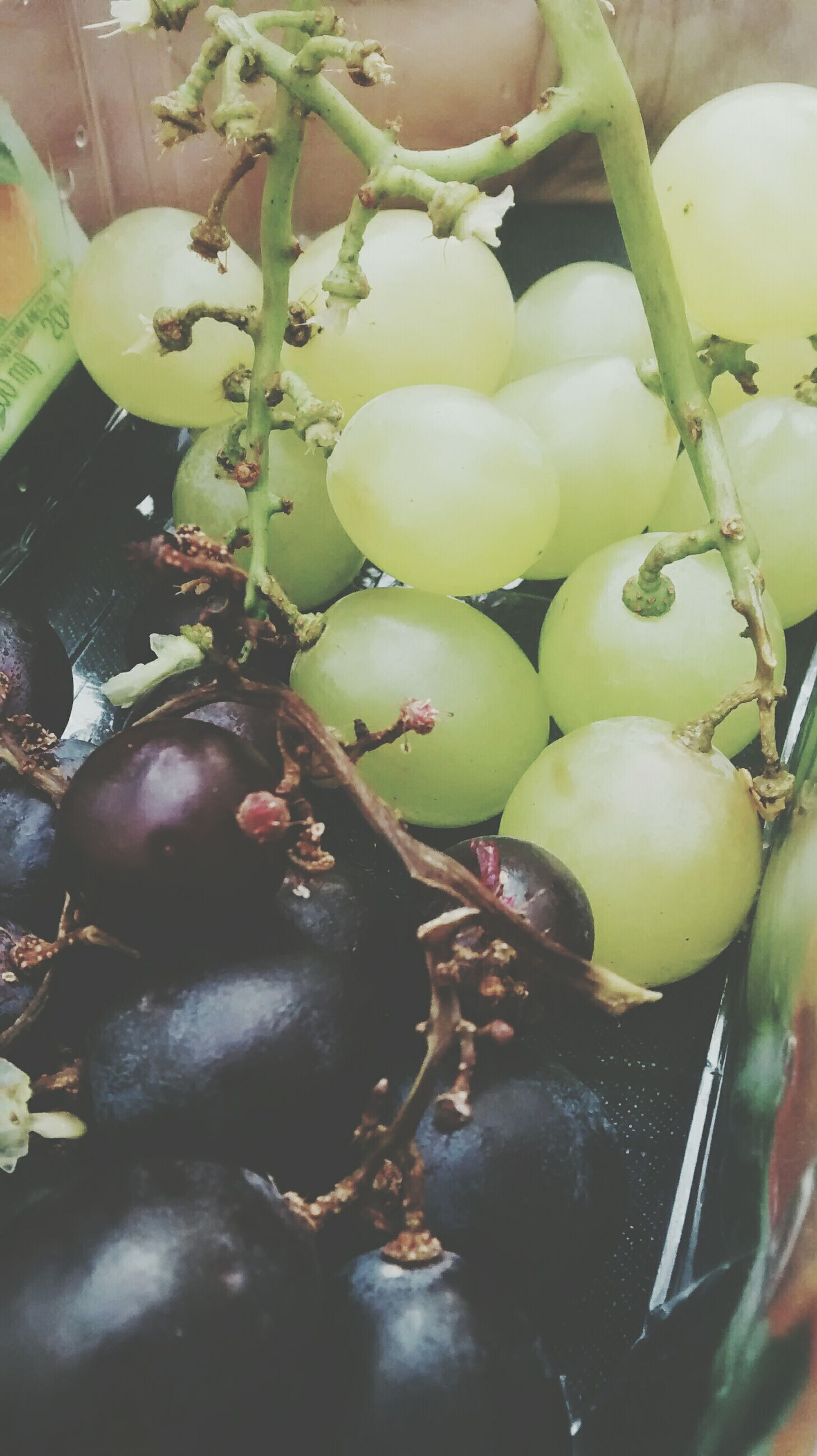 food and drink, fruit, healthy eating, food, freshness, close-up, leaf, green color, growth, raw food, ripe, high angle view, grape, indoors, organic, vegetable, nature, no people, branch, plant