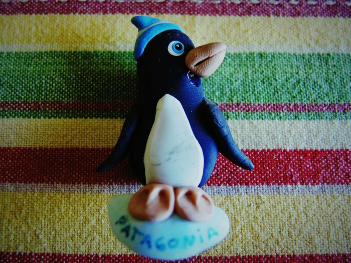 Multi Colored Childhood Indoors  Day Penguin No People