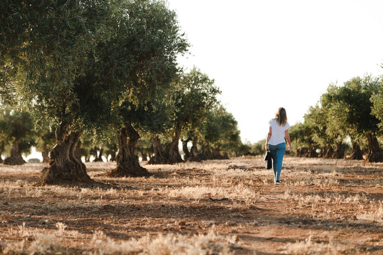 Rear view of woman walking at olive orchard