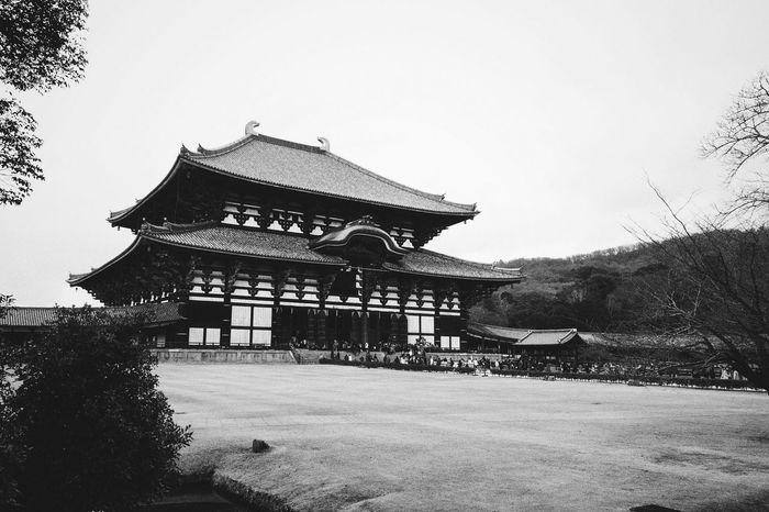 Nara // VSCO Vscocam Monochrome Blackandwhite Nikon D3100 Temple Japanese  Japanese Temple Buddhist Temple Temples