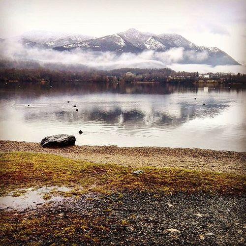 Dogendurance Cold Goodmorning Volunteer Mountains Lake Mirrormirror Letsstart Nonecanstopus