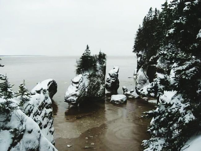 Bay Of Fundy Wintertime Rock Formation New Brunswick