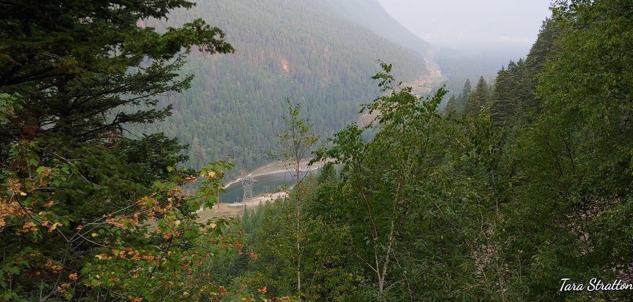 Forest Fire Smoke Tree Water Mountain