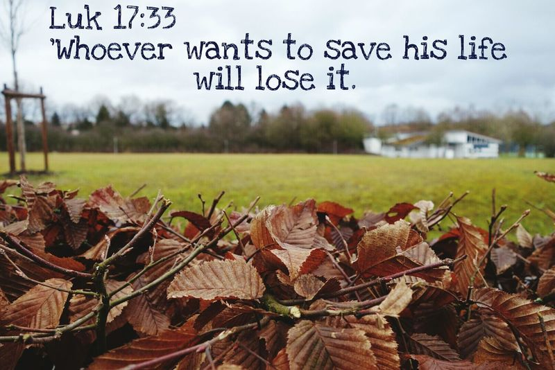 *[[Luk 17:33]] EasyEnglish* 'Whoever wants to save his life will lose it. But if he loses his life for me, he will save it. Faith Winter Belive Bible Bible Verses Grass Fields Jesus Christ Jesus Nature Field Check This Out Nature_collection Nature Photography