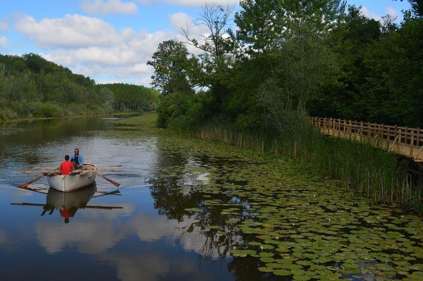 Water Lake Nature Karasuacarlarlongozu Karasu Turkeyphotos TurkeystagramTürkiye Turkey Turkeyphotooftheday Karasu Animal Themes Nikon D5200 Nature