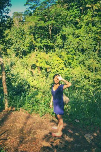 Forest Forestwalk