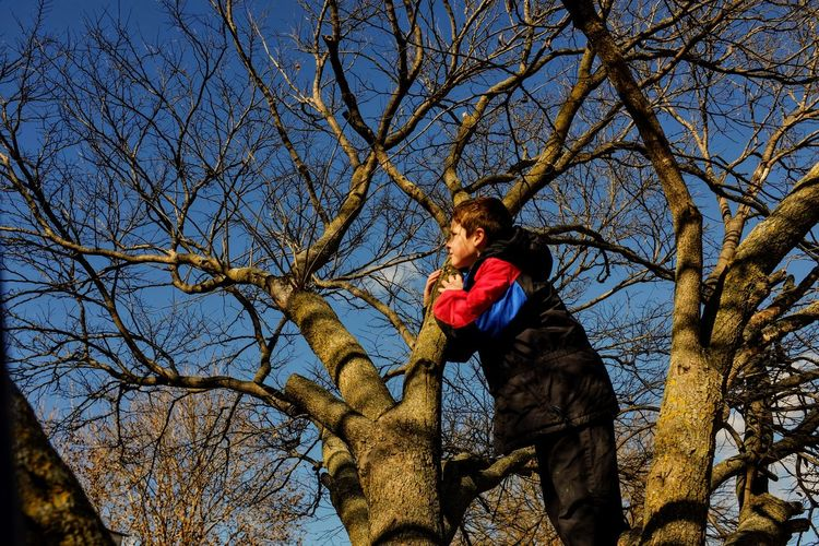 Boy standing by bare trees