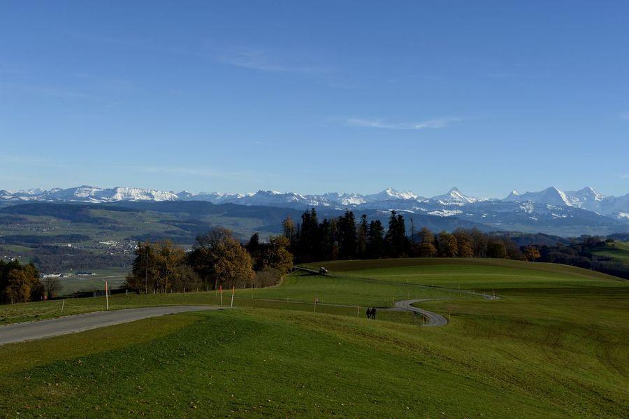 Gurten 2017 Year Alpen Alpenpanorama Aussicht Automne🍁🍂🍃 Fernsicht Güsche Herbst November Schweiz Schweizer Alpen Shadow And Light Blauer Himmel Forest Grün Gurten Schatten Shadow Switzerland Wald