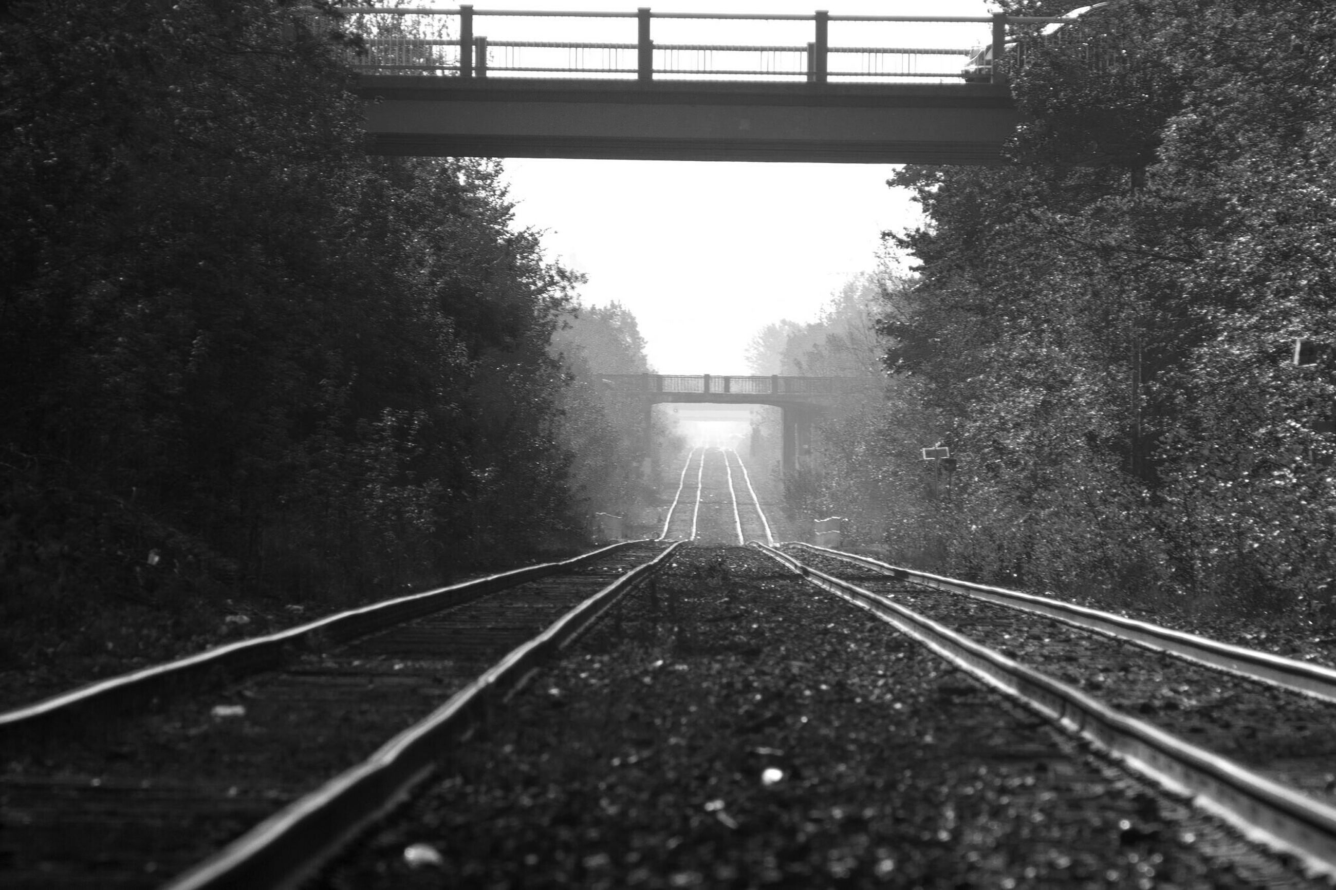 railroad track, the way forward, transportation, diminishing perspective, tree, rail transportation, vanishing point, connection, railing, long, railway track, day, tranquility, metal, straight, surface level, forest, no people, nature, clear sky