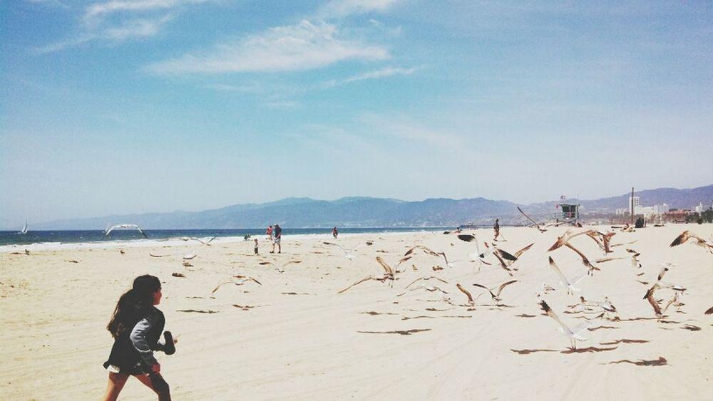 Get Em! Urban Birds California Love Enjoying Life ♥
