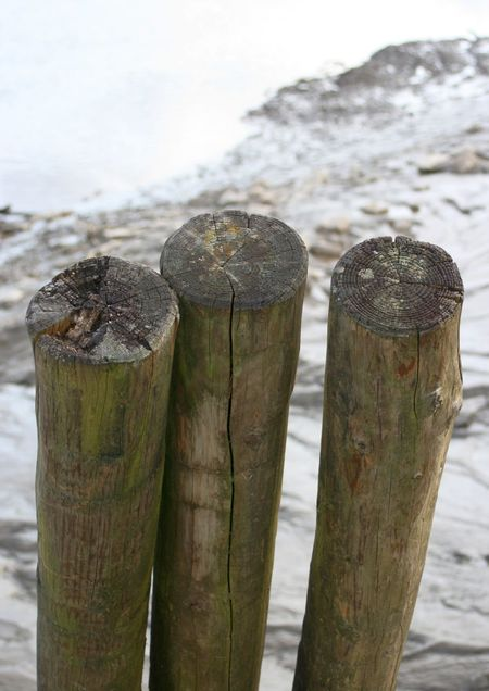 Wooden posts at a small riverside dock Dock Riverside Weathered Wood Wooden Posts