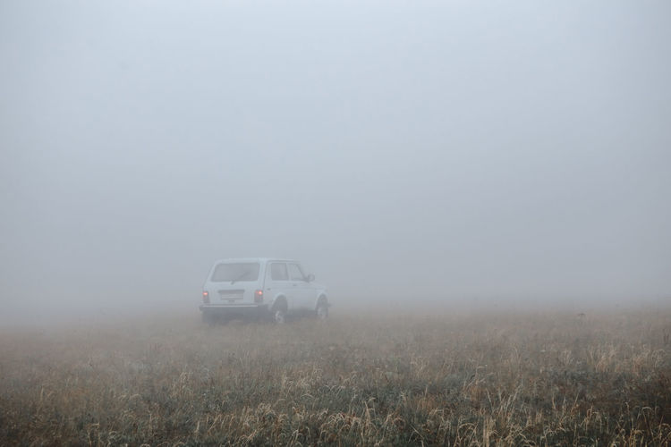 Car On Field During Foggy Weather