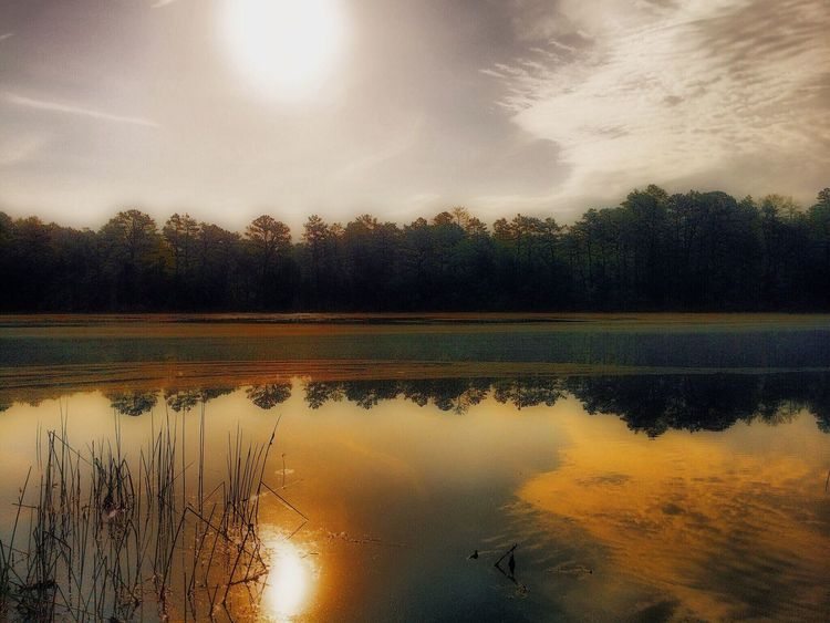 Rediscovered gems with The Roll EyeEm Best Edits Tadaa Community NJ Pinebarrens Lakeview Harrisville Pond