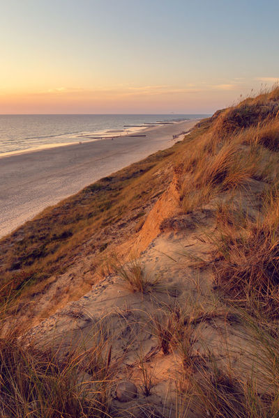Rotes Kliff, Kampen Beach Photography Deutschland Kampen, Sylt North Sea Coast Rotes Kliff, Kampen Rotes Kliff, Sylt Sylt, Germany Beach Europe Grass Horizon Marram Grass Nature North Sea Outdoors Red Cliff Scenics - Nature Sea Sky Sunset Sylt Tourist Destination Tranquility Water