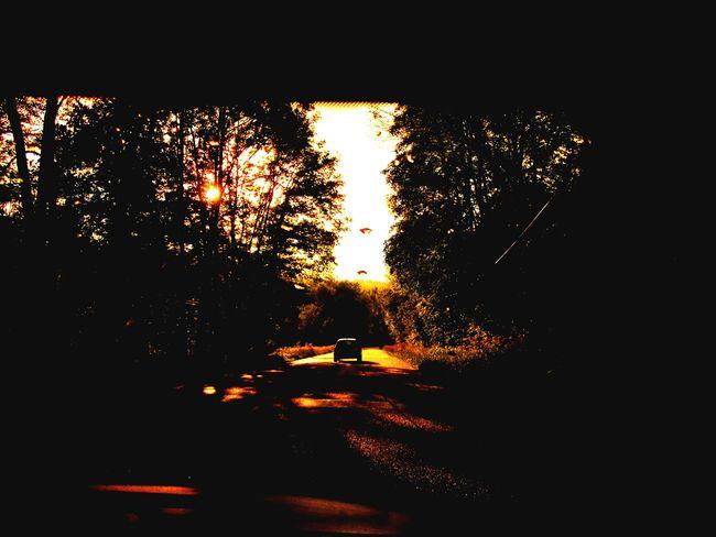 Sur La Route Sunset