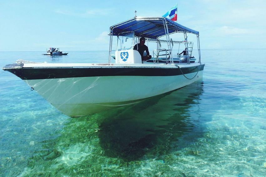 Island Mabul Island Nature Island Life