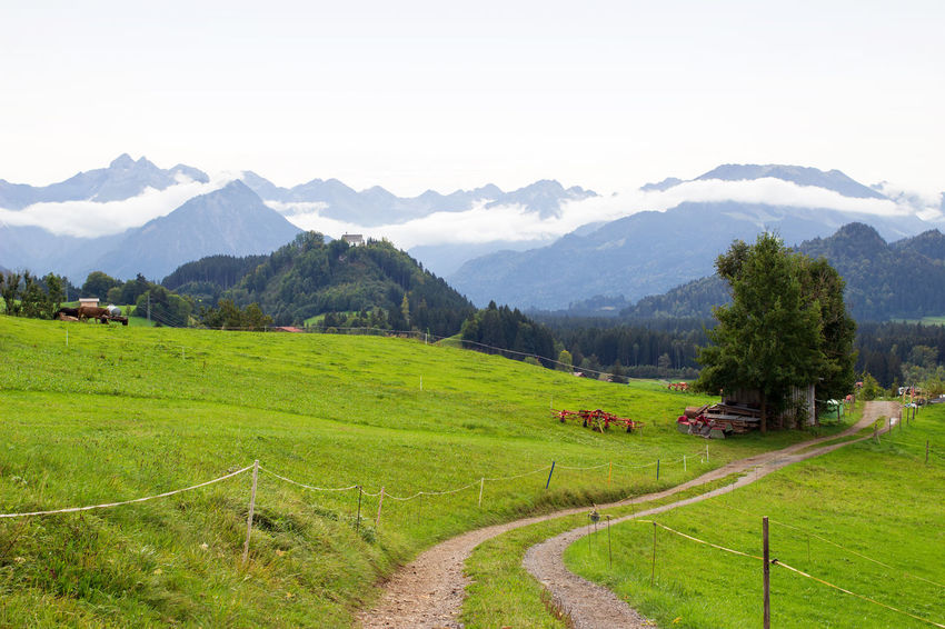 Landscape in Bavaria/Germany Meadow Grassland Tourist Destinations Tourist Destination Travel Destinations Travel Destination Chapels Chapel Churches Church Valley Rural Scene Mountains Mountain Countryside Agriculture Tranquility No People Nature Landscapes Landscape Allgäu Bayern Beauty In Nature Allgäu Alps